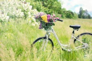 Ik doe bijna alles op de fiets