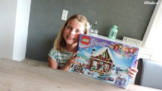 Brickking LEGO Friends