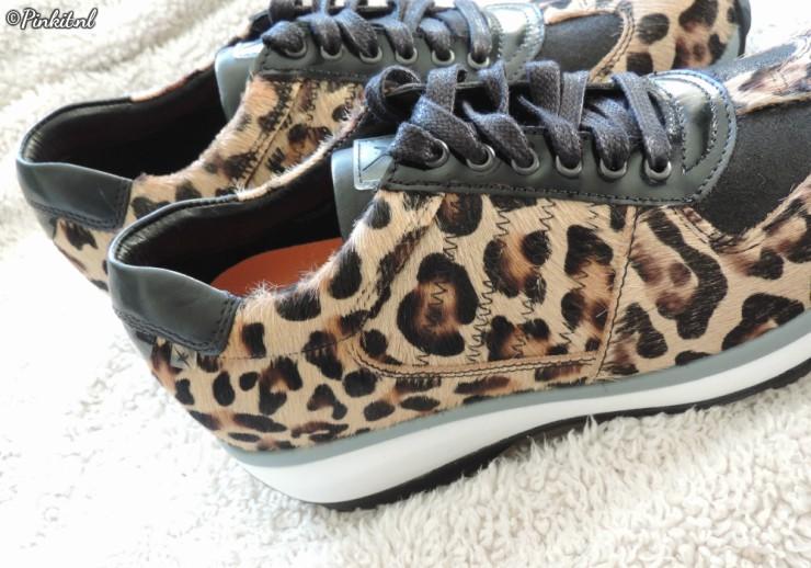 Xsensible Shoes