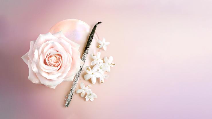 In elke vrouw ligt een idool in het verschiet. Een betere versie van haarzelf, een rol die vervuld dient te worden. Het derde hoofdstuk van Idôle is geïnspireerd op een bepaald gevoel van overtuiging. Een nieuwe flacon, begeleid door een nieuw parfum; Lancôme Idôle Aura is het resultaat.